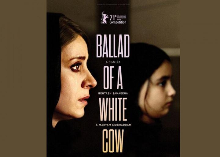 رونمایی از پوستر بینالمللی «قصیده گاو سفید»