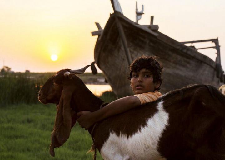 پروانه نمایش «یدو» و دو فیلم دیگر صادر شد